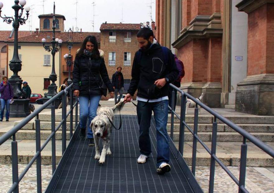 cucciolo-esperienze in città